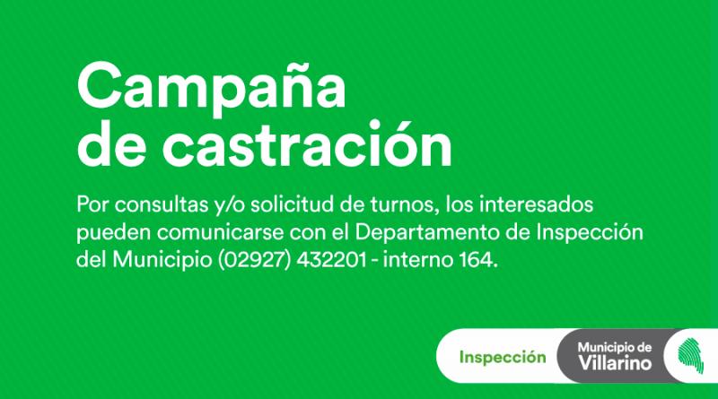 plantilla-WWW_Castración