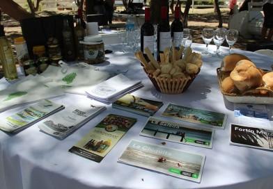 Sorteos de vouchers y productos regionales en la Fiesta de la Cebolla