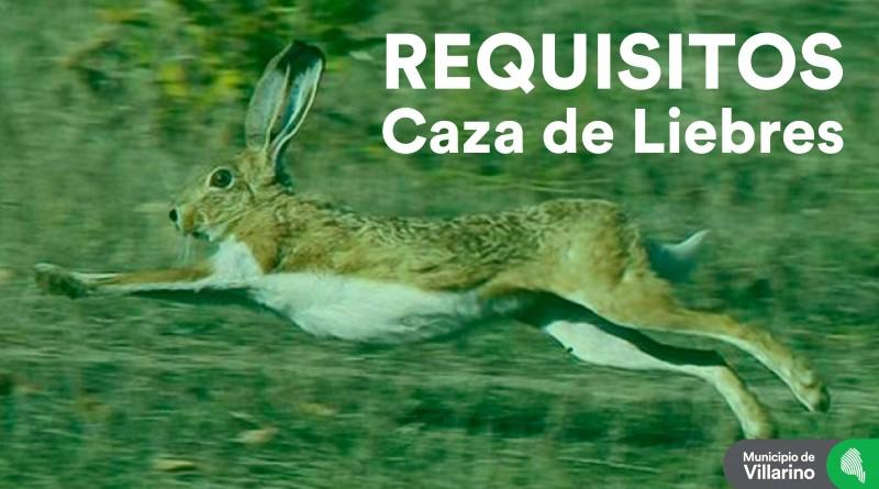 Caza-Liebre-01