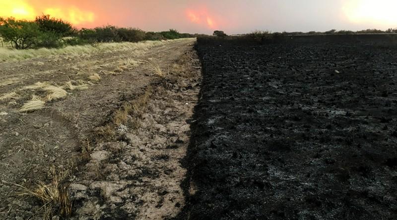Comenzó la época para realizar cortafuegos, ¡evitemos los incendios estivales!