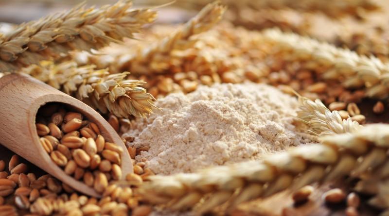 Continúa disponible el análisis gratuito de calidad de trigo
