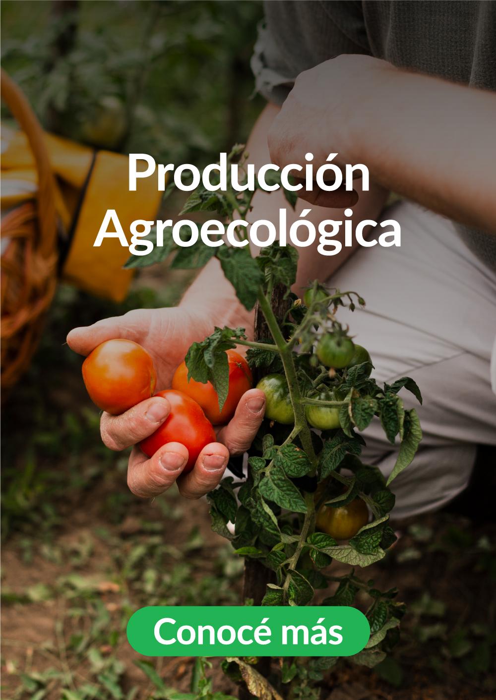 7-Produccion-Agroecologica