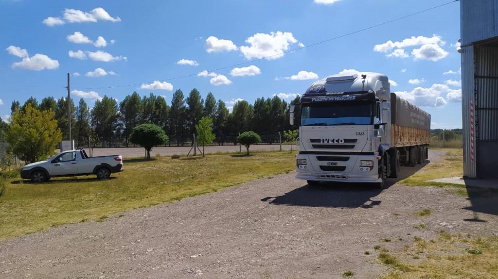 camion cebolla