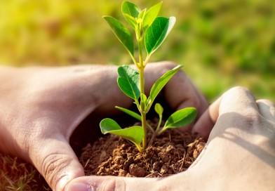 Villarino será sede de la segunda Feria Nacional de Emprendedores Verdes